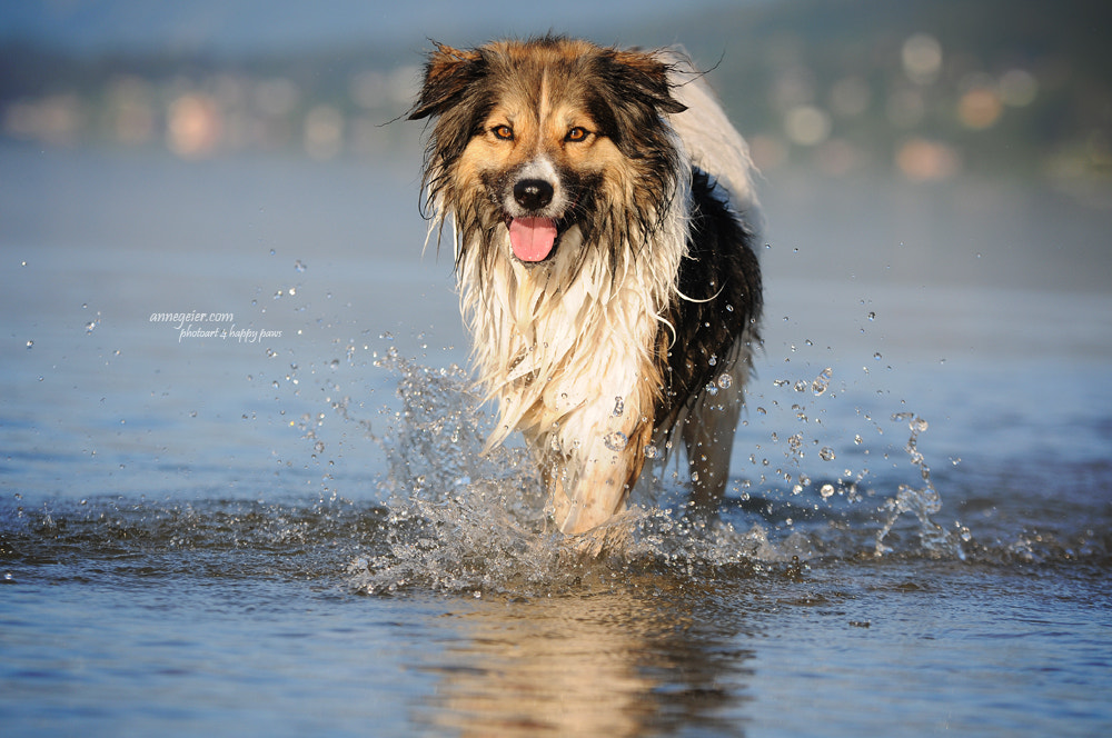 Photograph Happy soul by Anne Geier on 500px