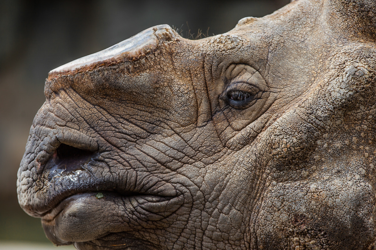Photograph Stress by Jonathan Howard on 500px