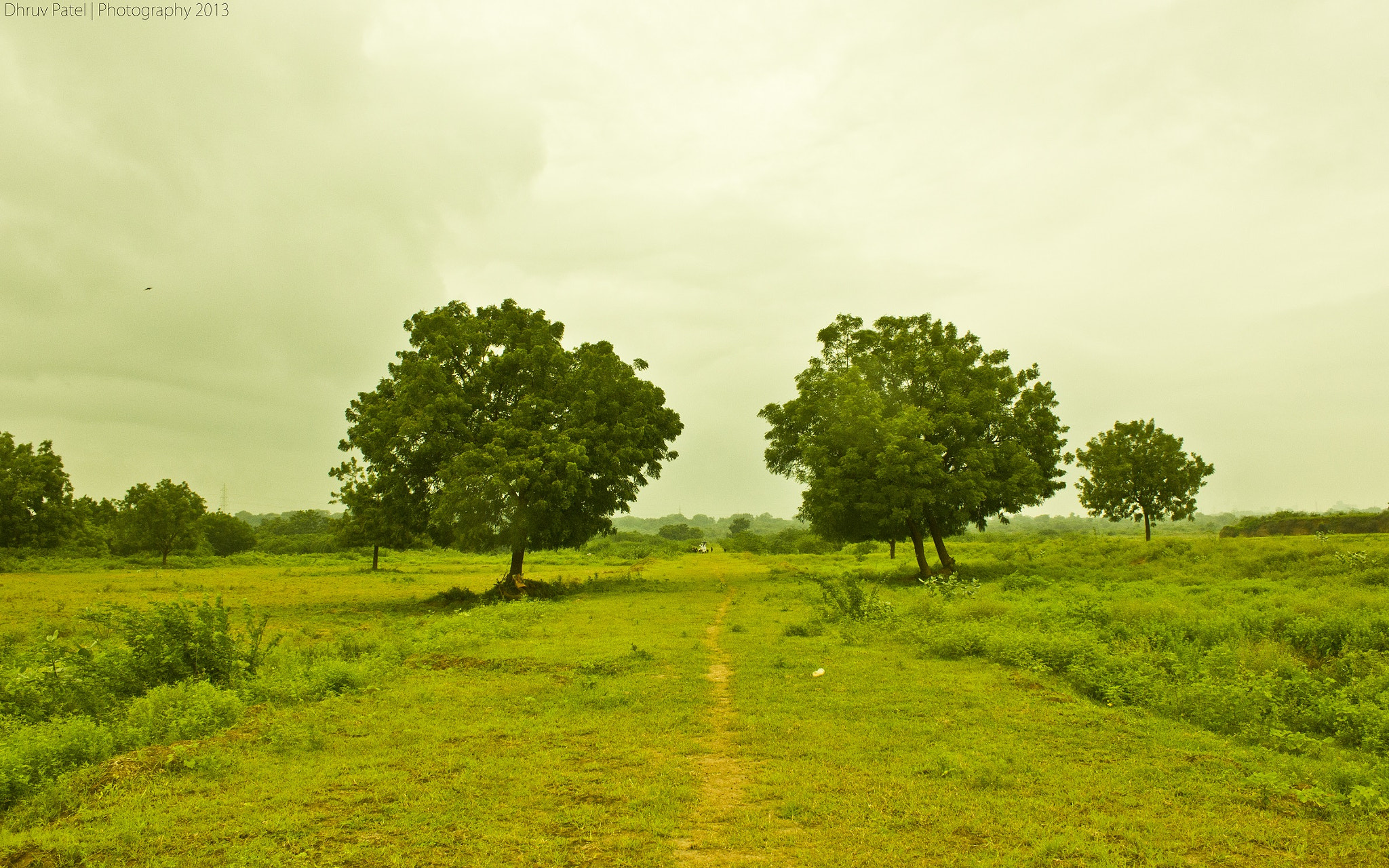 Photograph A Way To The Village by Dhruv Patel on 500px