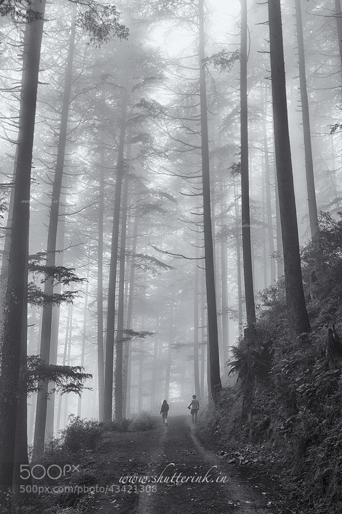 Photograph In nature's lap... by Nitin Dangwal on 500px