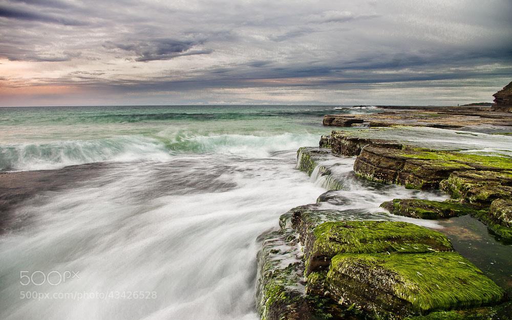 Photograph Turimetta Beach by Chris Jones on 500px