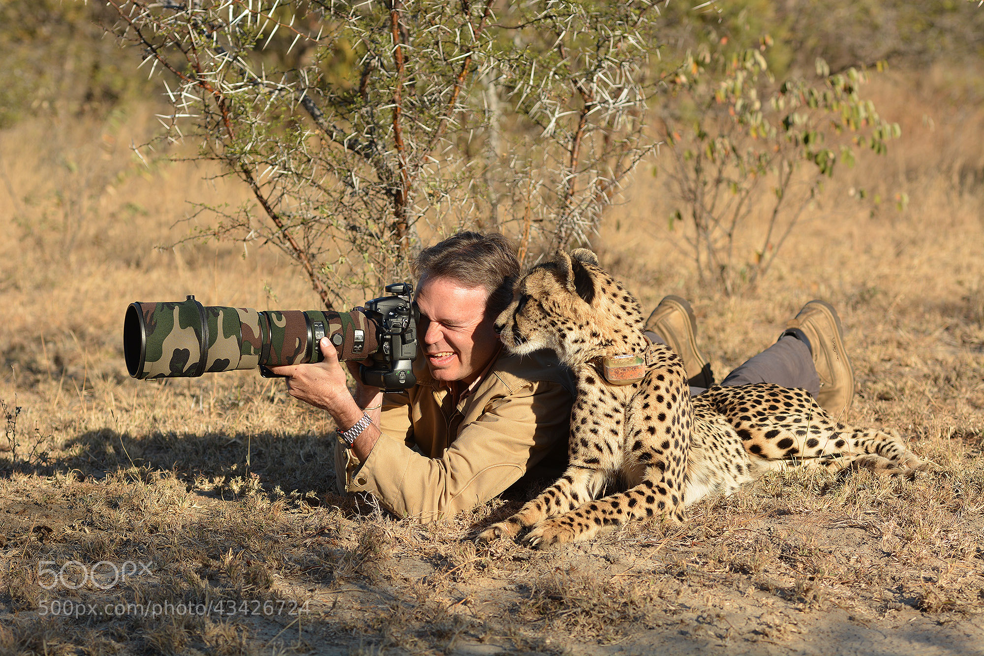 Photograph Photo safari with a cheetah... by Chris du Plessis on 500px