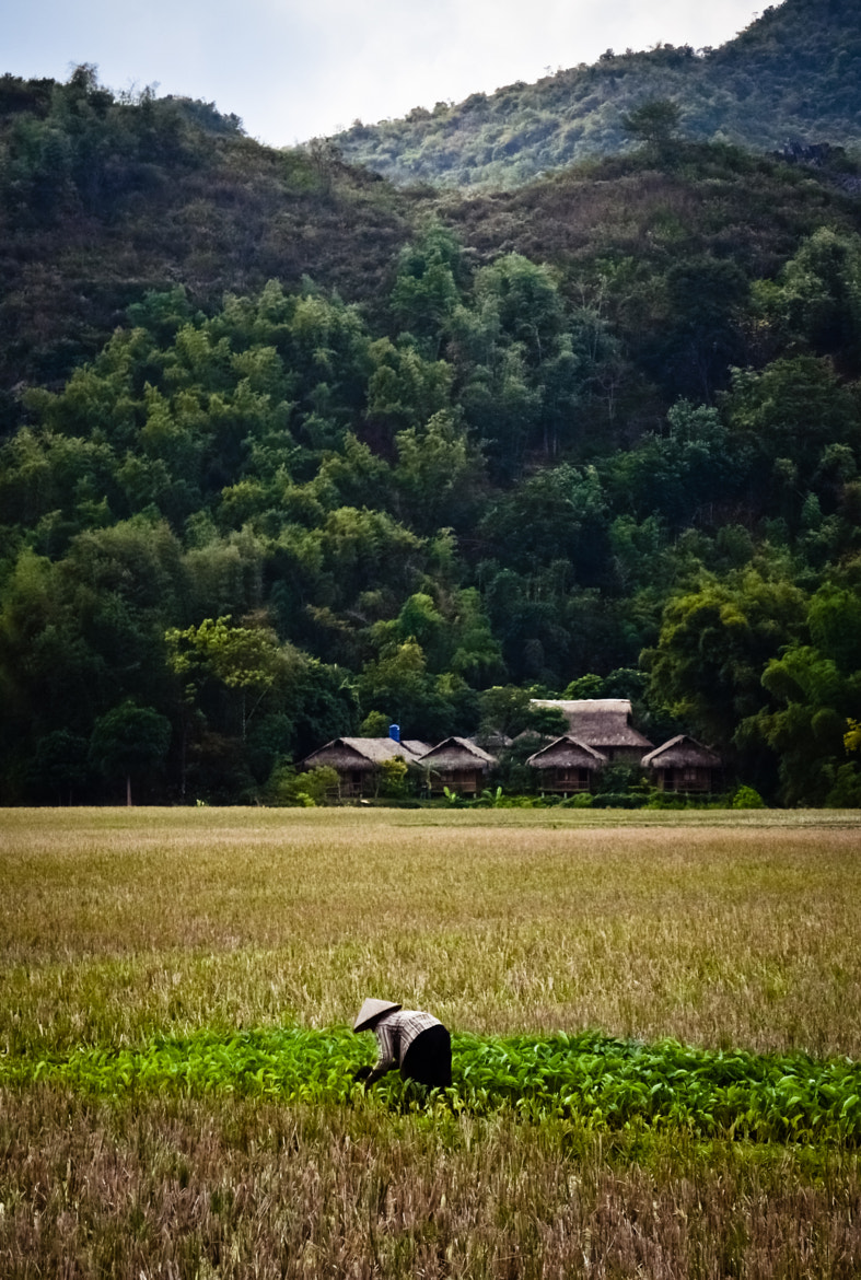 Photograph Mai Chau by Abe Dakin on 500px