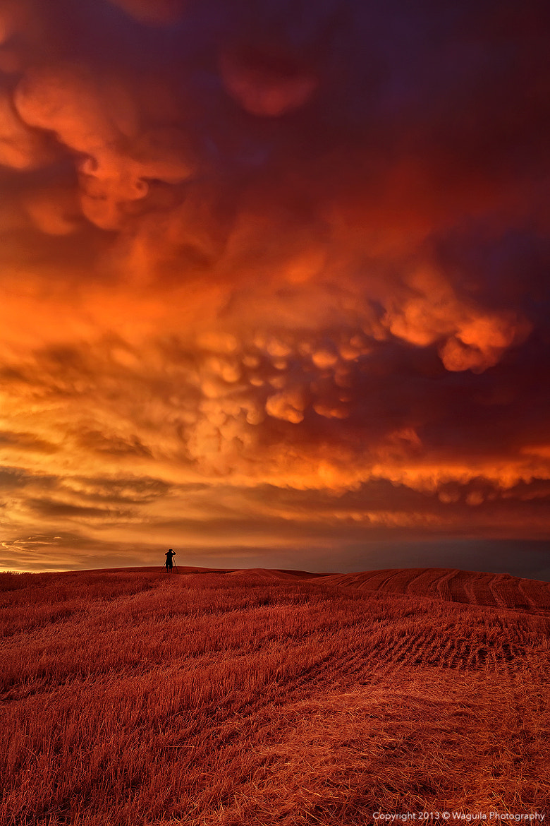 Photograph Mammatus clouds invasion by Salim waguila on 500px