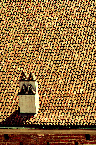 Photograph Tiled roof in Milan by Tatiana Abramova on 500px