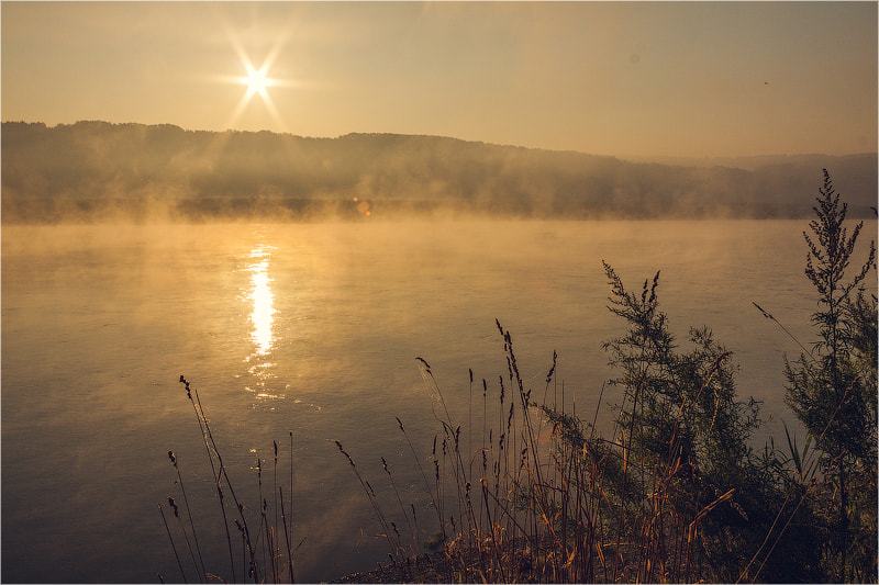 Photograph Morning by Pavel Sinegubov on 500px