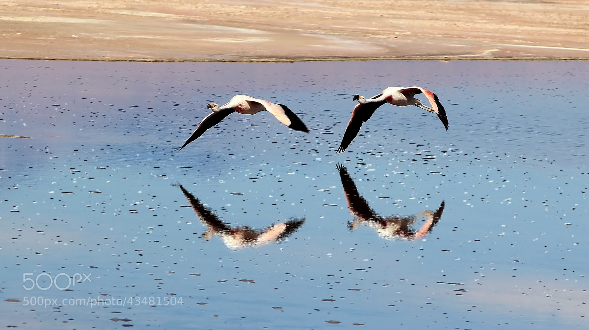 Photograph twin flight 1 by Nora 80 on 500px