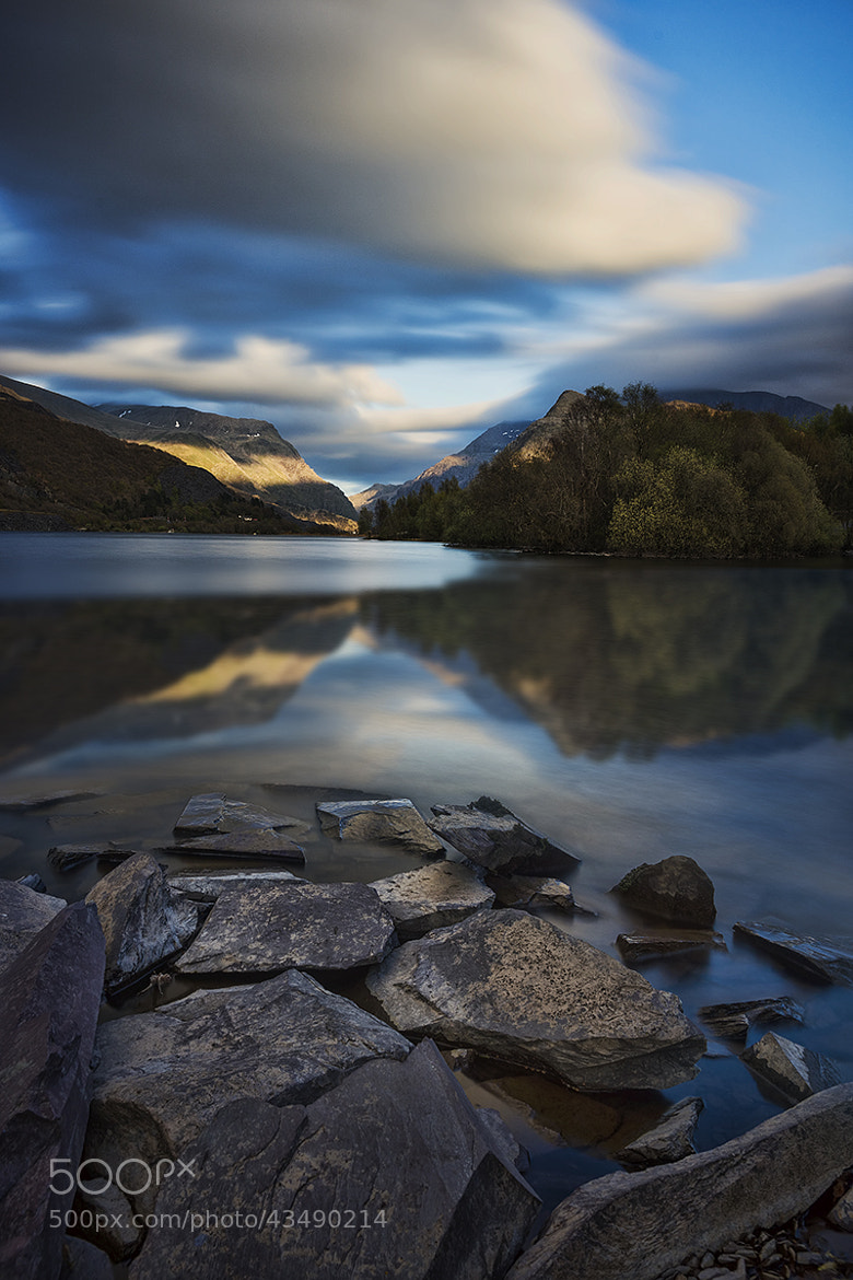 Photograph Reflected Beauty by Dave Cox on 500px