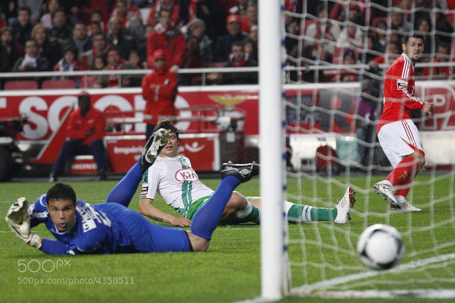 golo de Nolito, Benfica vs Setubal, 15 jornada, Liga Zon Sagres, 14 de janeiro de 2012,Estdio da Luz , Lisboa, Foto Paulo Calado