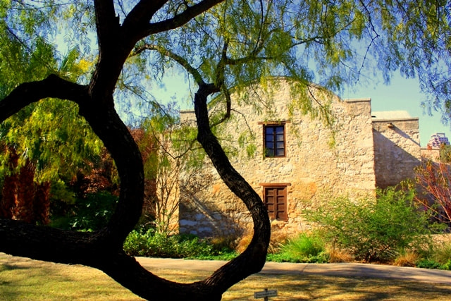 Photograph Garden of The Alamo by KW Lanning on 500px