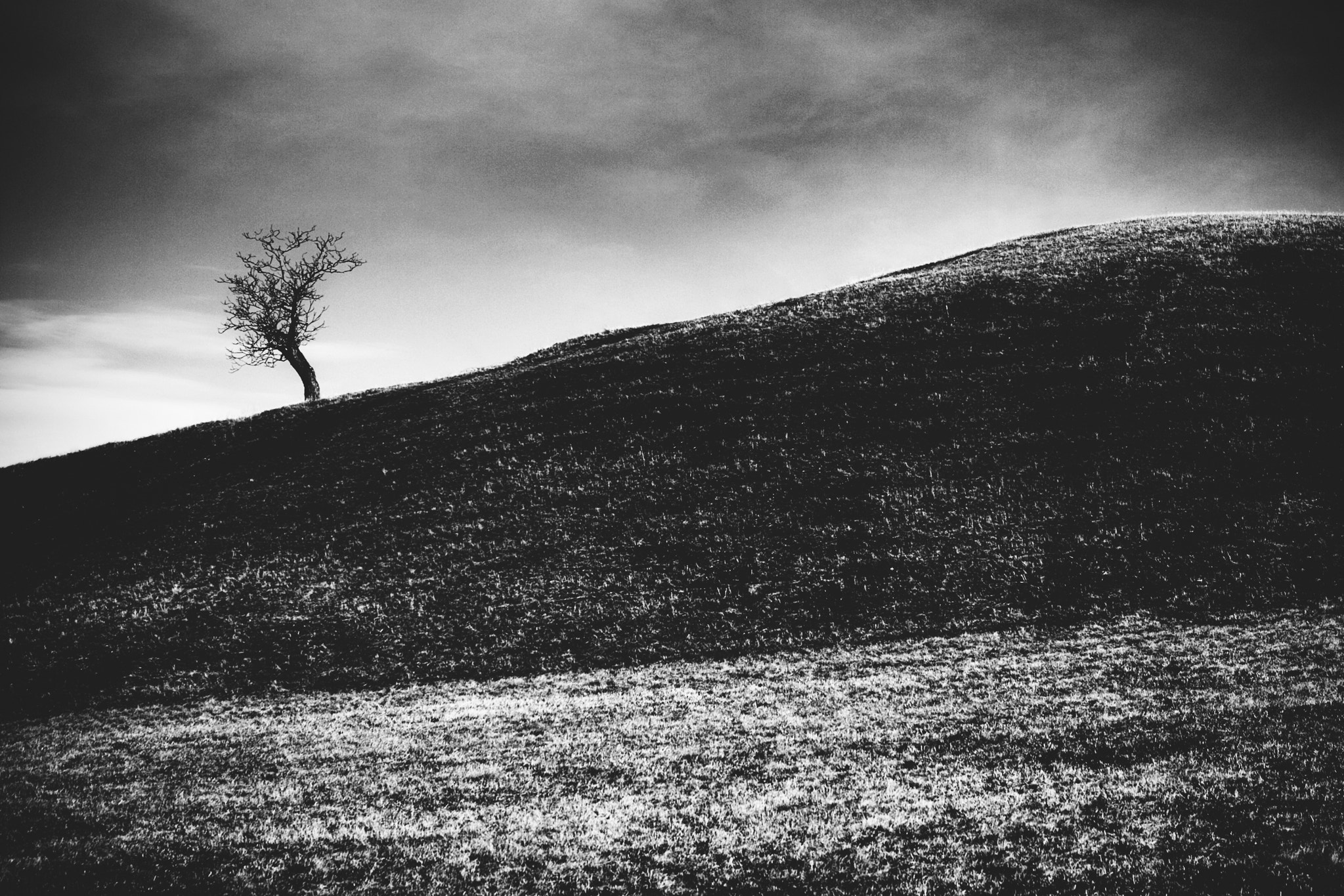 Photograph paysage.monochrome. by Steffen Walther on 500px