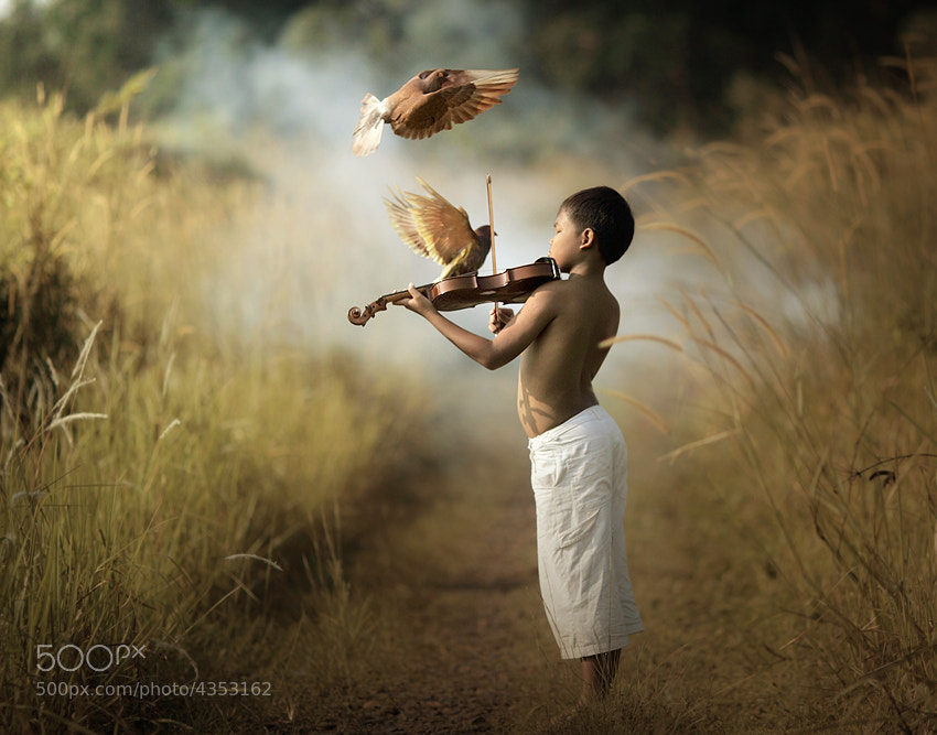 Photograph simphony to my mother by asit  on 500px