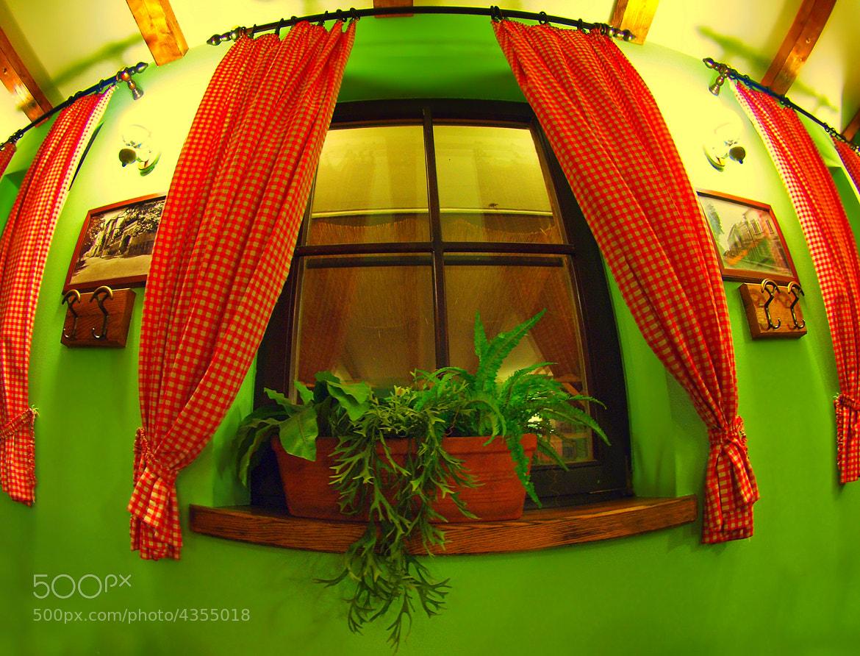 Photograph WINDOW by Mirna Vidić on 500px