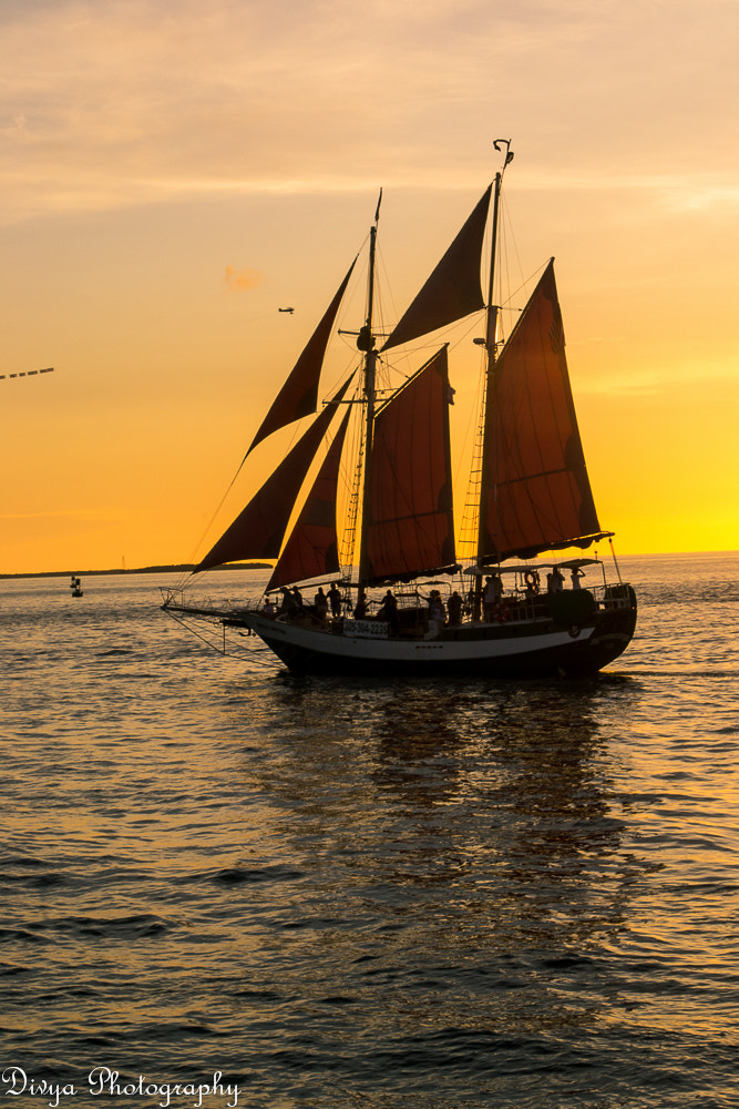 Photograph Boat by Divya  on 500px