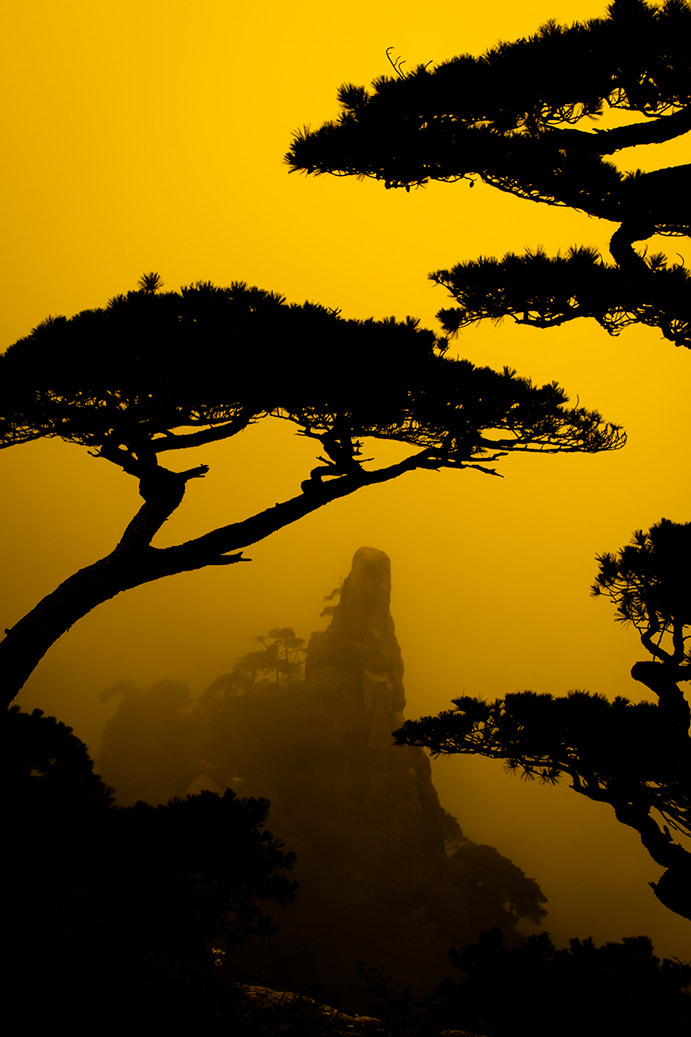 Photograph Yellow Mountain II by Maria Diez on 500px