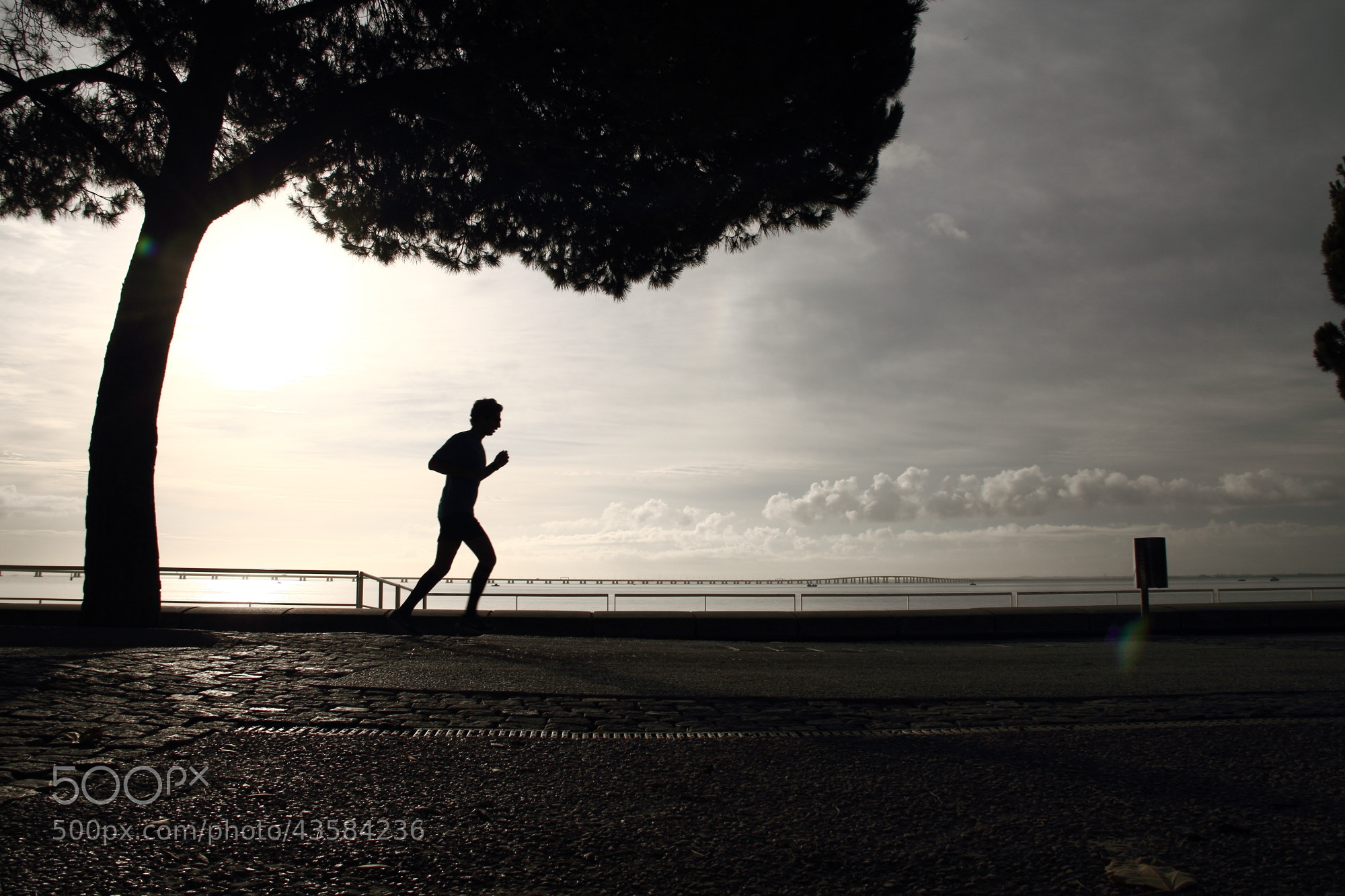 Photograph Morning Jogging by Paulo César Silva on 500px