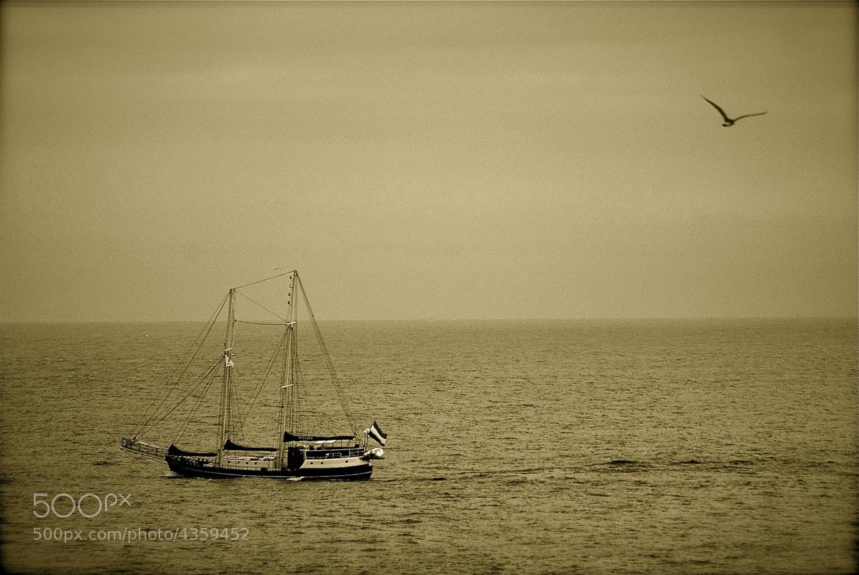 Photograph imagínate la mar... by Luis Martínez on 500px