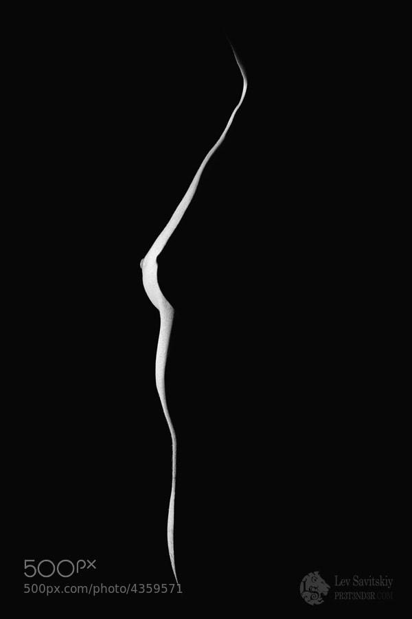 Photograph Silhouette by Lev Savitskiy on 500px