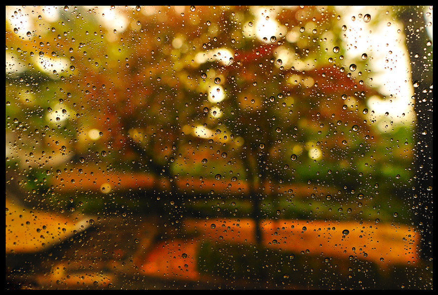 Photograph Rainy day by kitchen cook on 500px