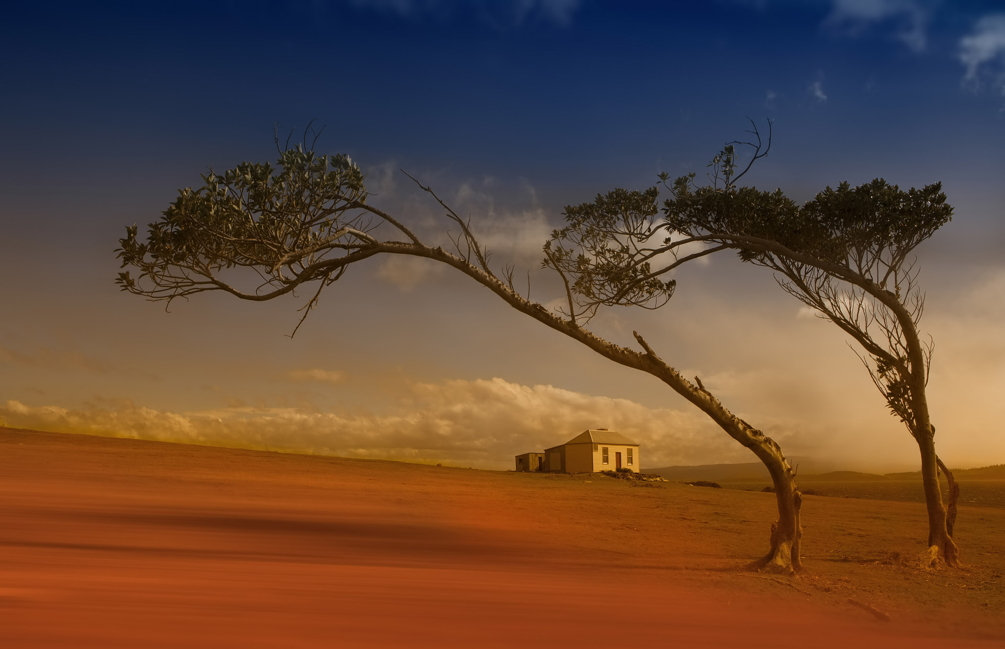 Photograph Dream On by Margaret Morgan on 500px