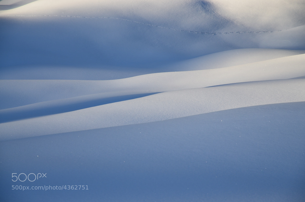 Photograph track in the snow by helmut flatscher on 500px