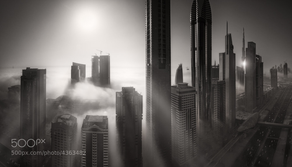Photograph Sepia Dream 2 by Alisdair Miller on 500px