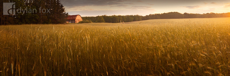 Photograph In The Field by Dylan Fox on 500px