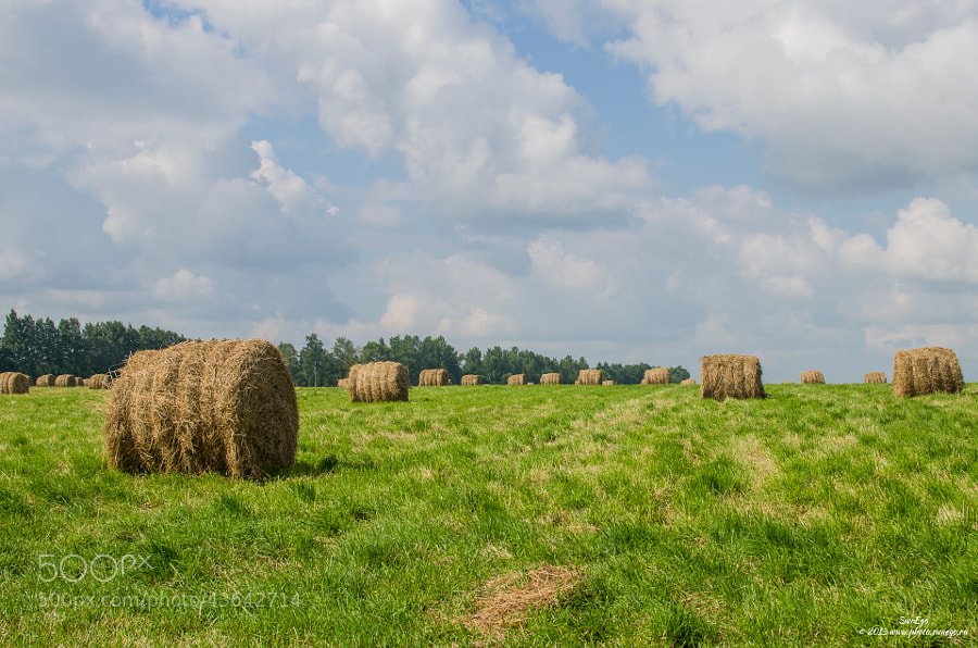 Rural landscape by Tolik Maltsev on 500px.com