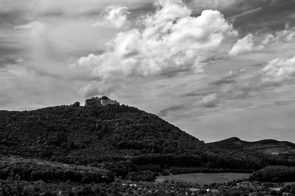 Photograph Hohenneuffen Castle by Susanne Ludwig on 500px