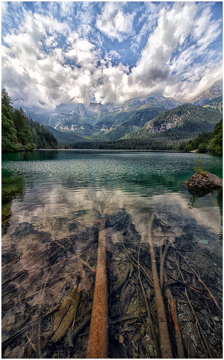 Photograph Water Dream by Gianluca Gobbi on 500px