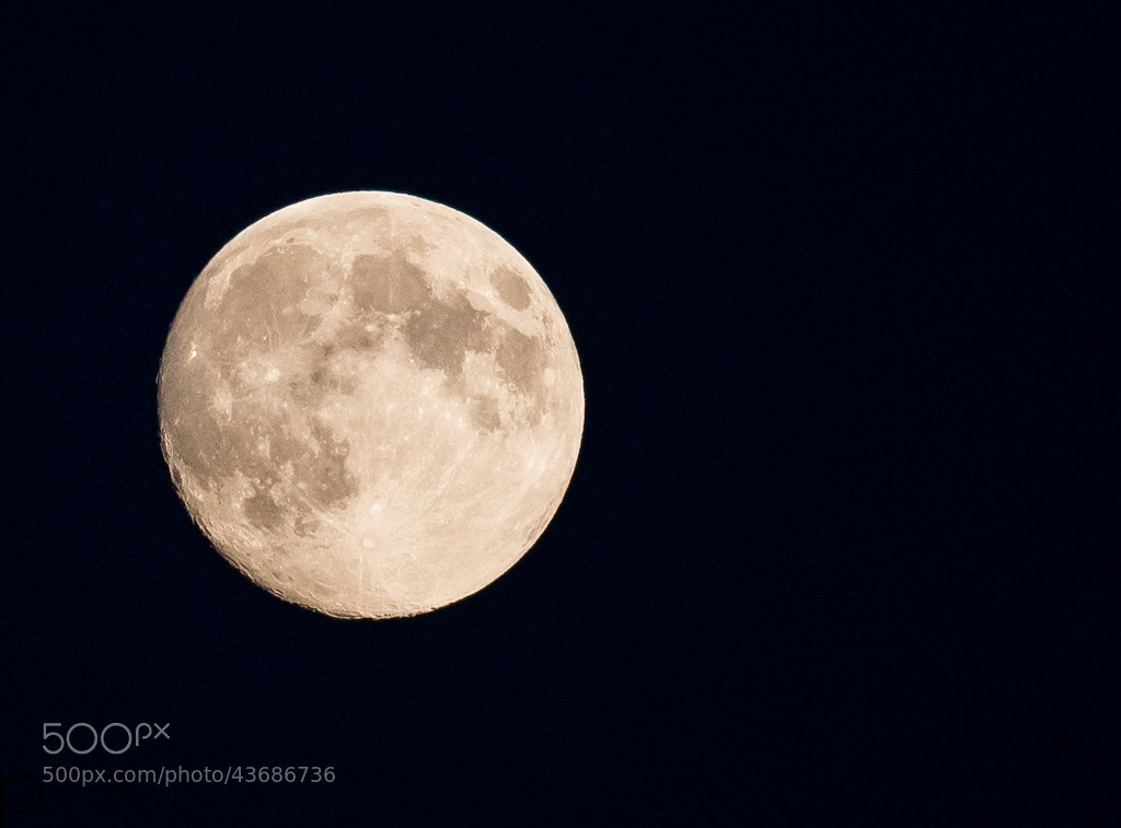 Photograph Summer Moon by Polluar  on 500px
