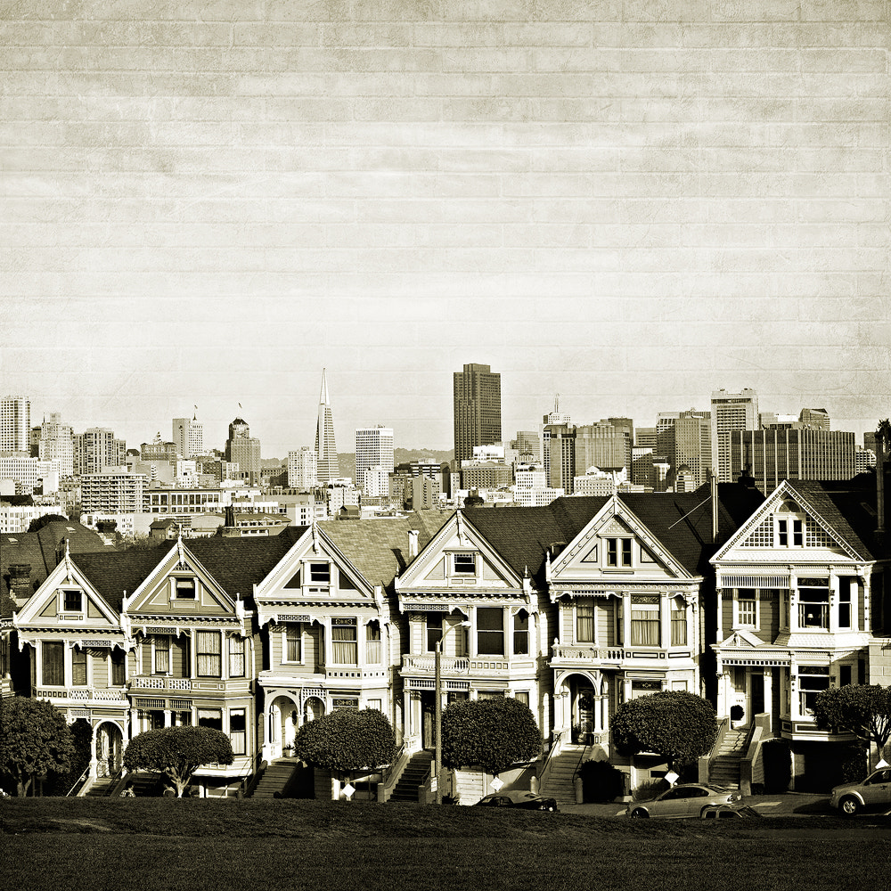 Photograph Painted Ladies by SaulVisuals on 500px