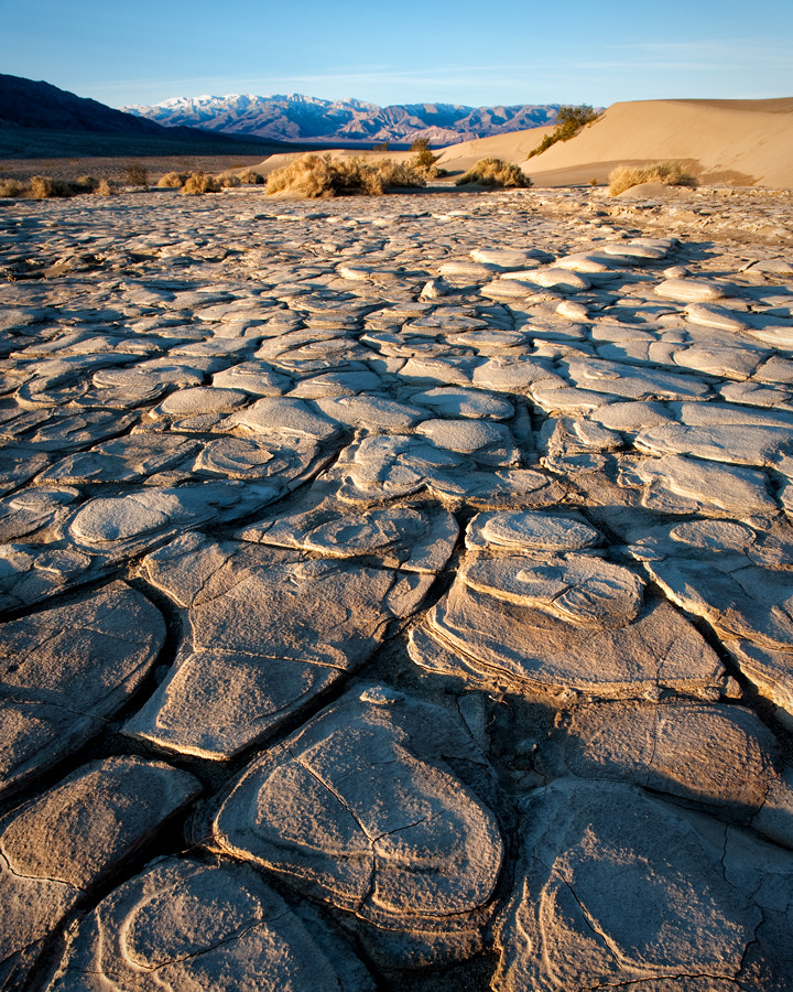 Photograph Mud Flats by Sharon Willson on 500px