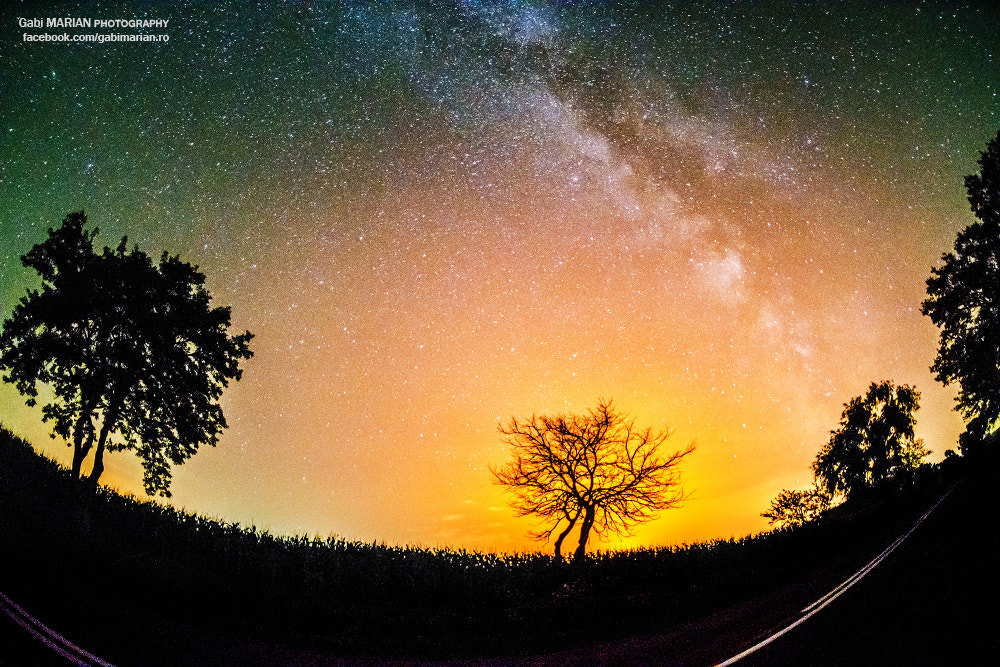 Photograph Way 2 the Milky Way by MARIAN Gabriel Constantin on 500px