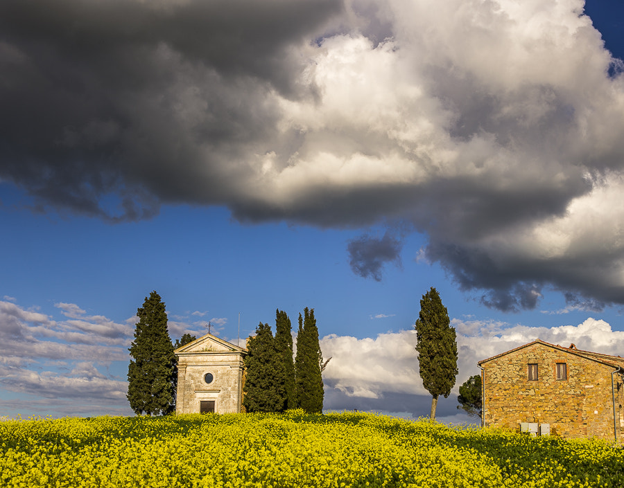 Photograph Cappella della Madonna di Vitaleta in Val d'Orcia in afternoon light by Hans Kruse on 500px