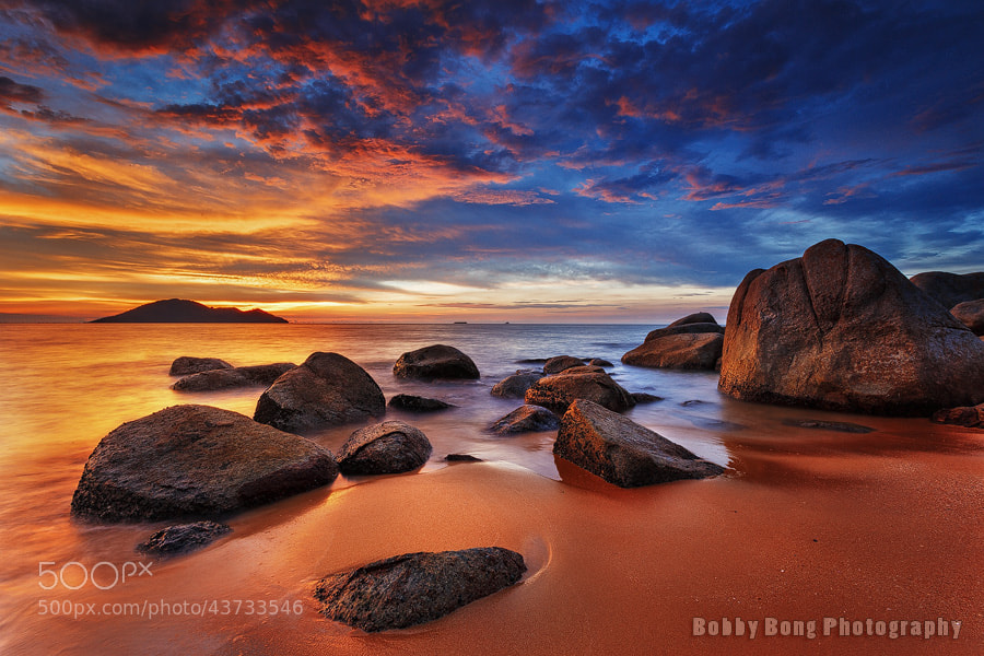 Photograph Golden by Bobby Bong on 500px