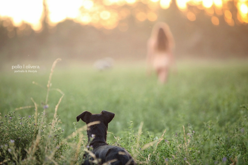Photograph a black dog watching a beautiful blonde walking naked in a green field while the sun falls by Pollo Olivera on 500px