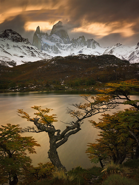Photograph Autumn in Patagonia by Michael Anderson on 500px