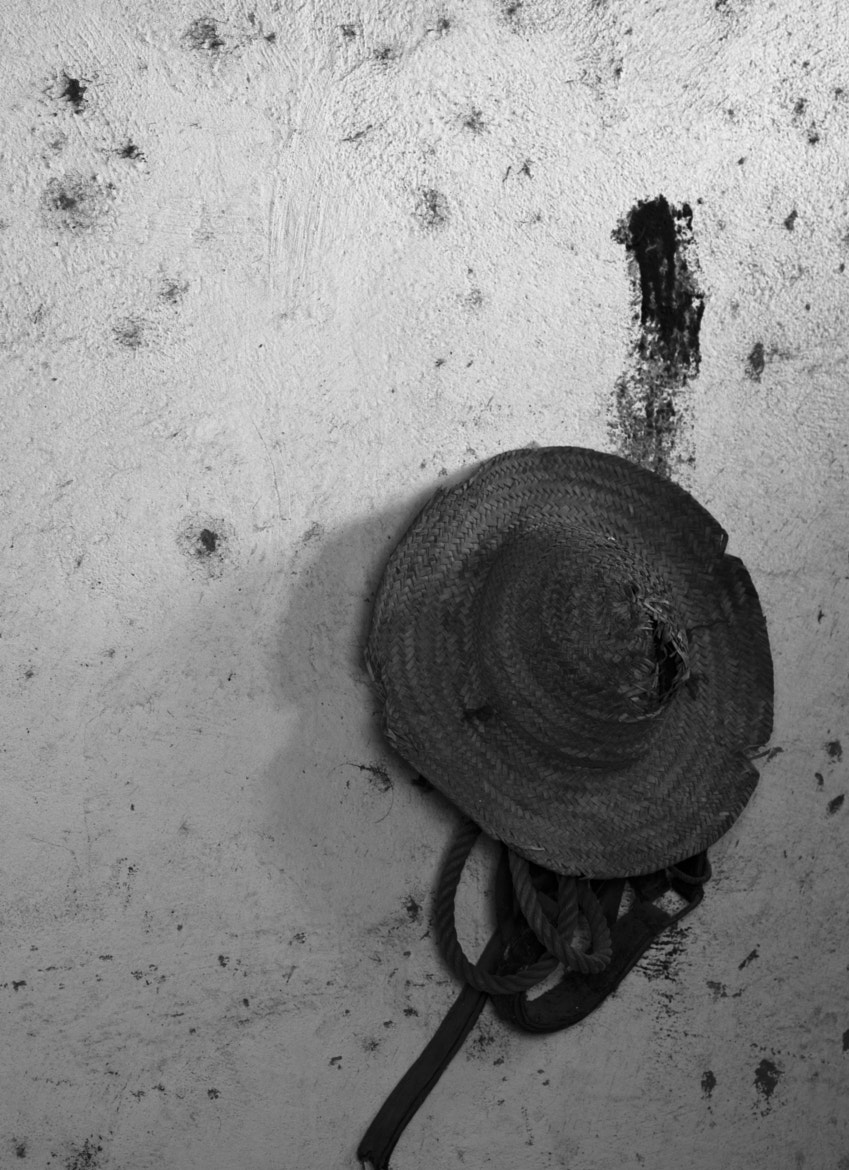 Photograph Peasant's hat by Philippe Lambert on 500px