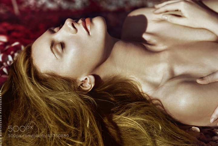 Photograph Petals by Olga Martzoukou on 500px