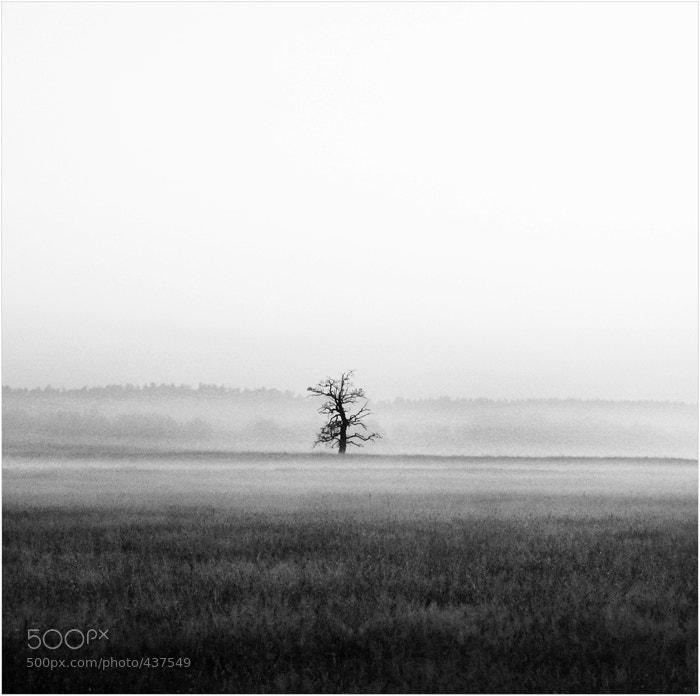 Photograph Single by Vladimir Buturlia on 500px