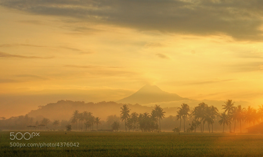 Photograph MORNING VIEW by Edi Wibowo on 500px