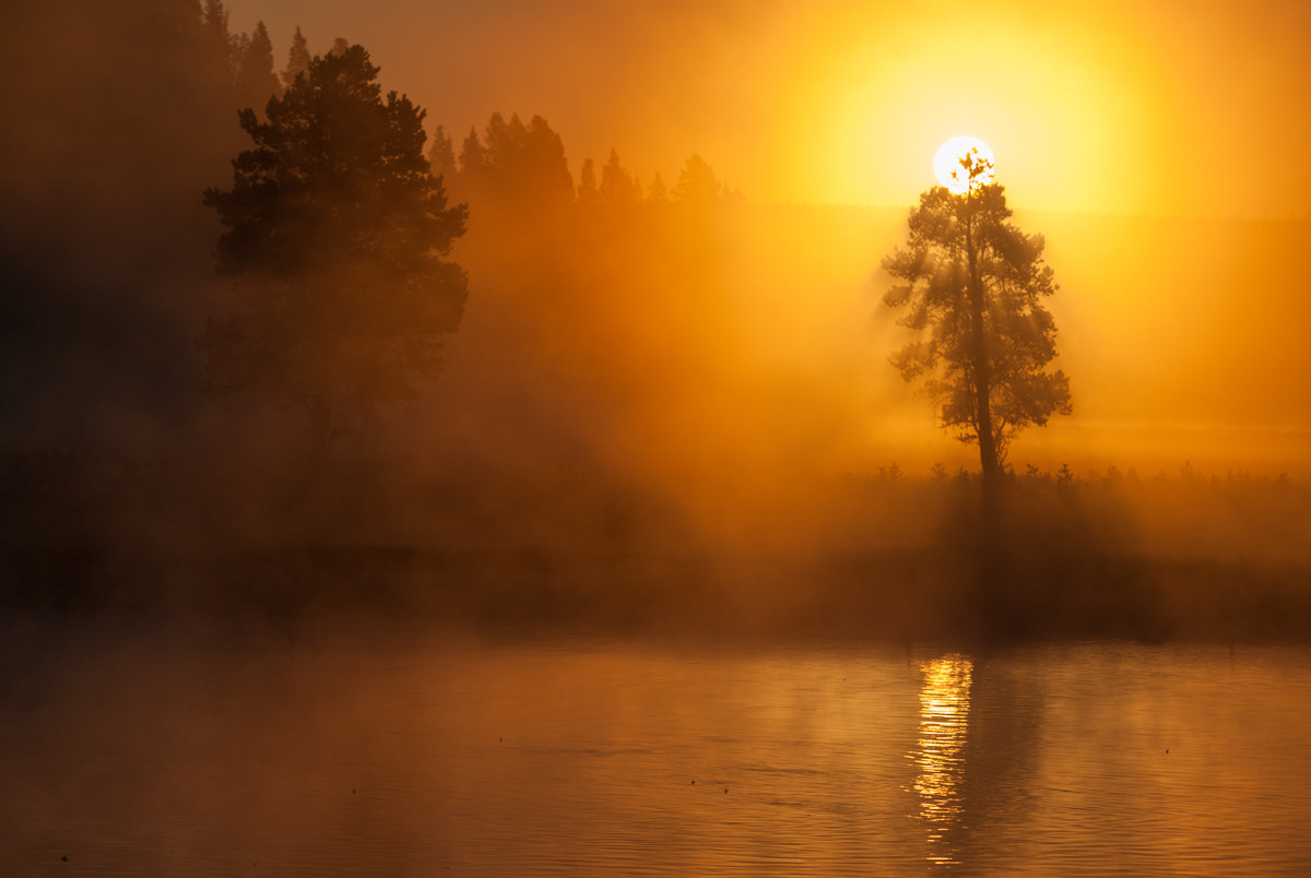 Photograph Sunrise over the Yellowstone River by Marc Escobosa on 500px