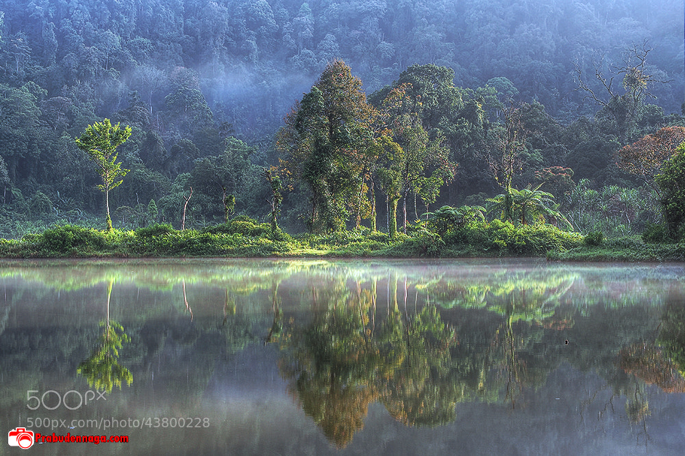 Photograph Quiet foggy morning by Prabu dennaga on 500px