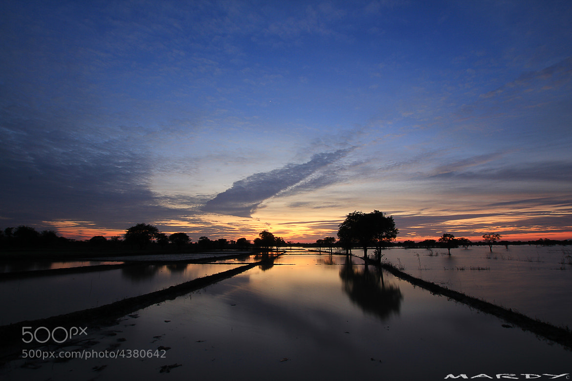 Photograph The Farm by Mardy Suong Photography on 500px