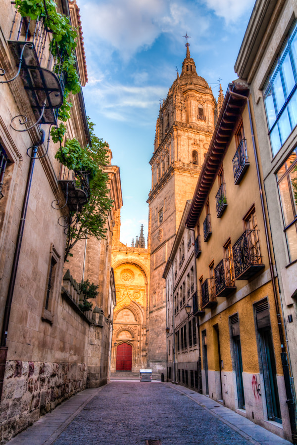 Photograph Salamanca Cathedral by Jose Agudo on 500px