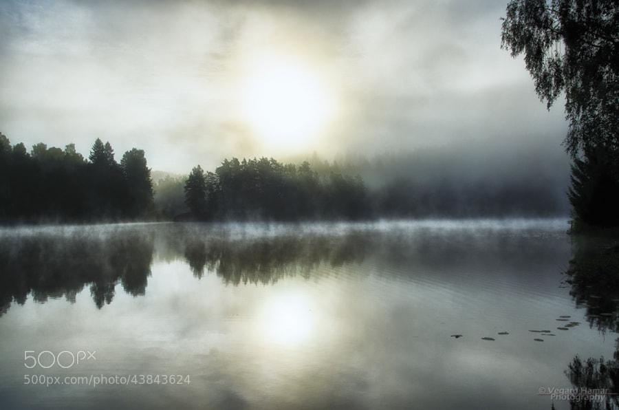 Photograph Morning Silence by Vegard Hamar on 500px