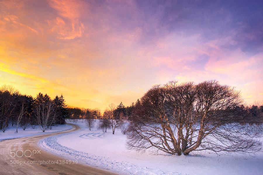 Fotografia Country Road Centro-Oeste por Richard Susanto em 500px
