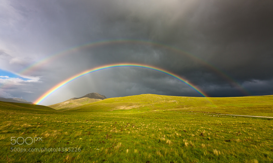 Photograph Rainbow by Hans Kruse on 500px