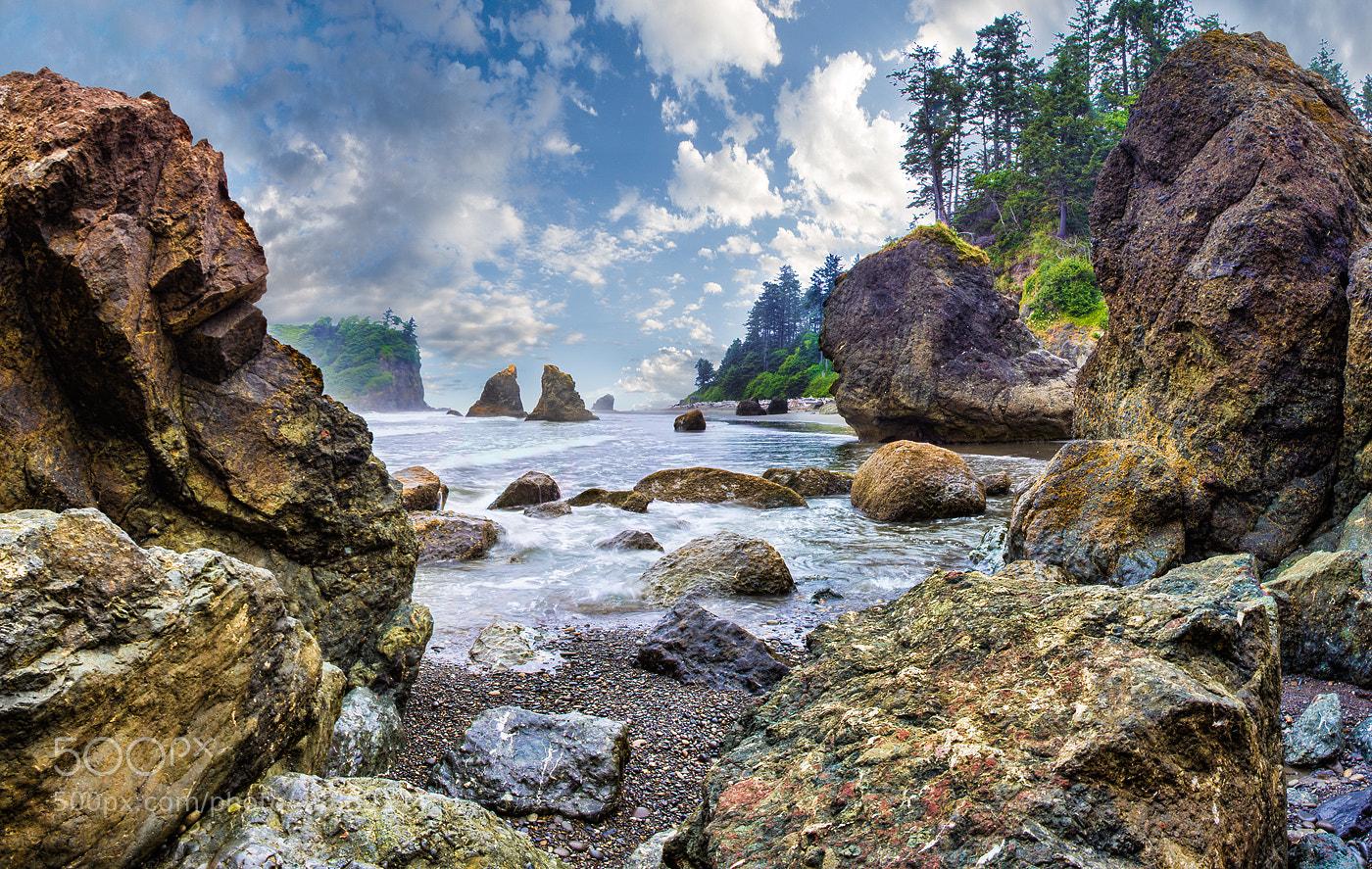 Photograph Pacific coast of USA by Alex Gubski on 500px